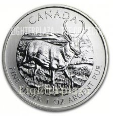 Canada 5 Dollars 1 oz Maple Leaf 2013 Antilope