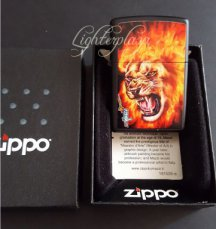 Zippo lighter Flamed Lion by Mazzi